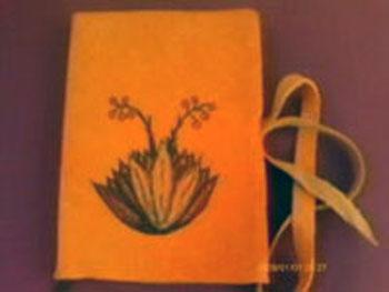 Cuaderno iluminacion